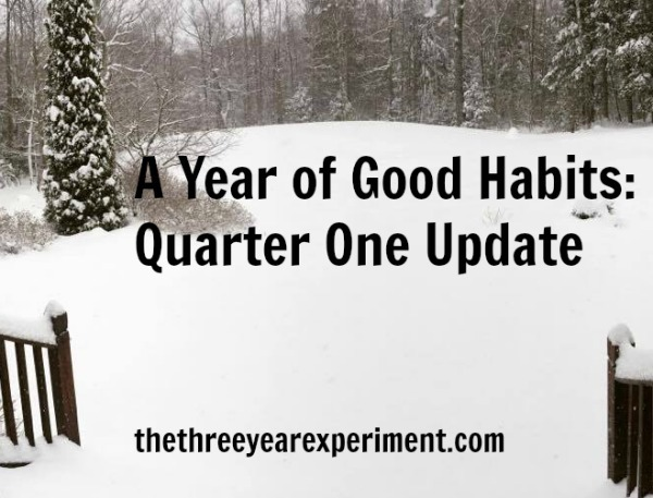 Quarter One Update--www.thethreeyearexperiment.com