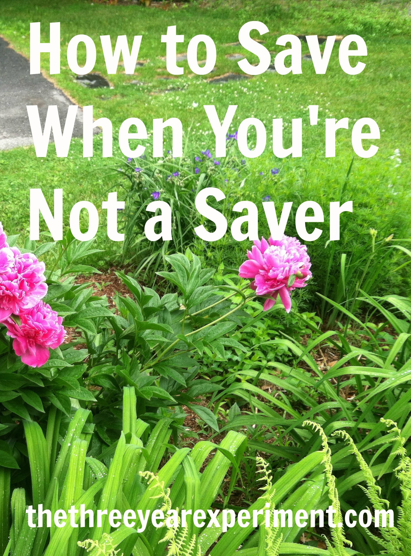 How to Save When You're Not a Saver-www.thethreeyearexperiment.com