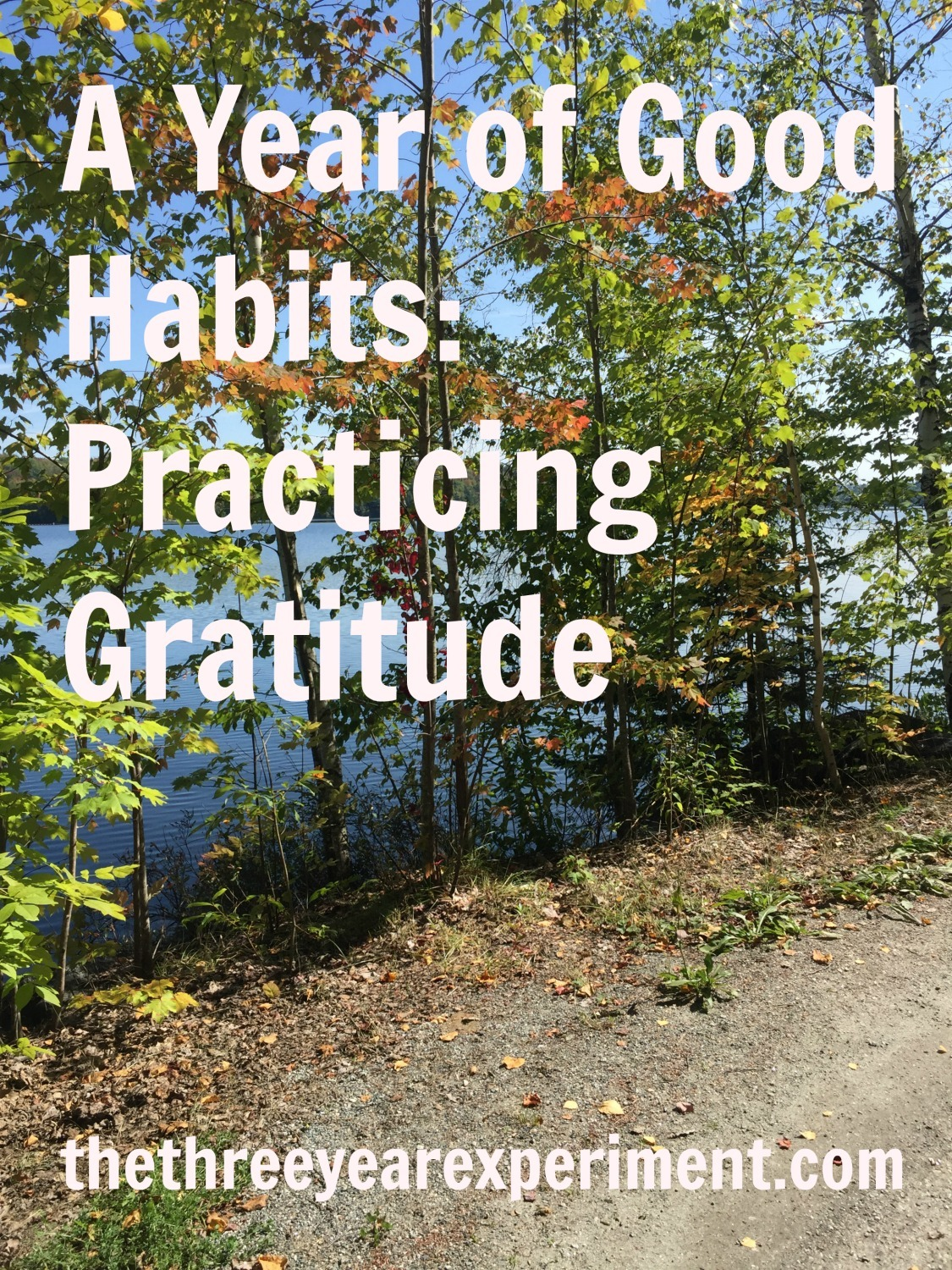 Practicing Gratitude--www.thethreeyearexperiment.com