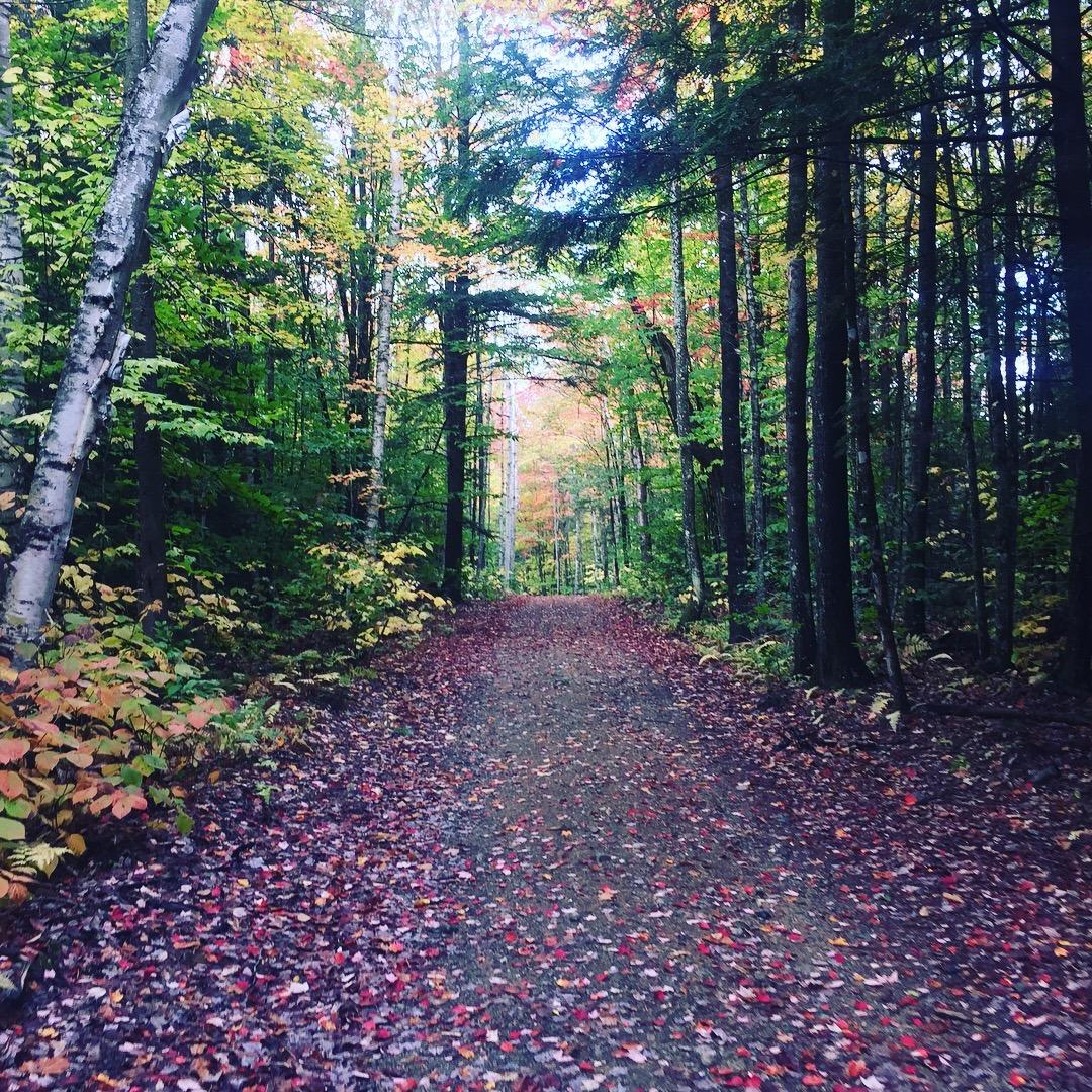 Running trail---www.thethreeyearexperiment.com