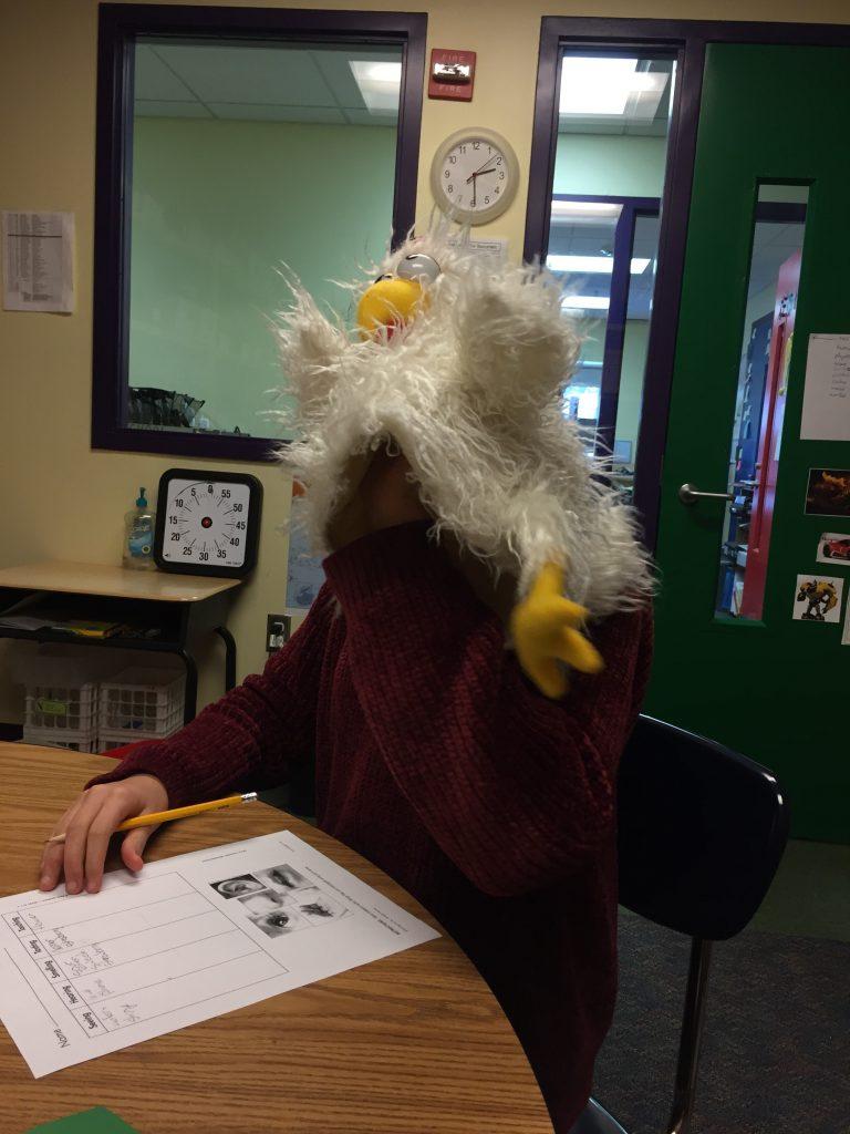 Chicken puppet student www.thethreeyearexperiment.com
