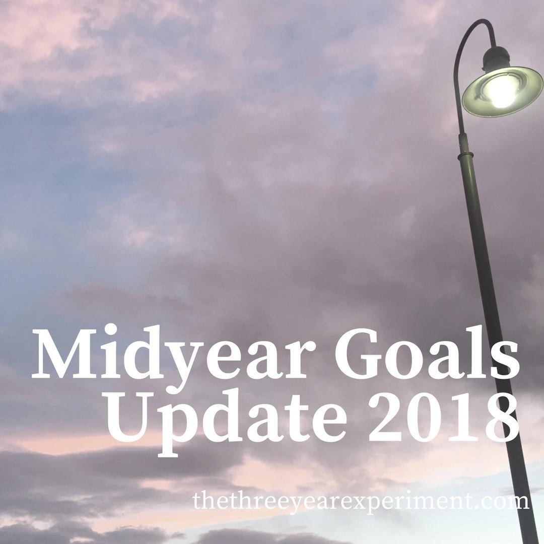 Midyear Goals Update 2018 www.thethreeyearexperiment.com