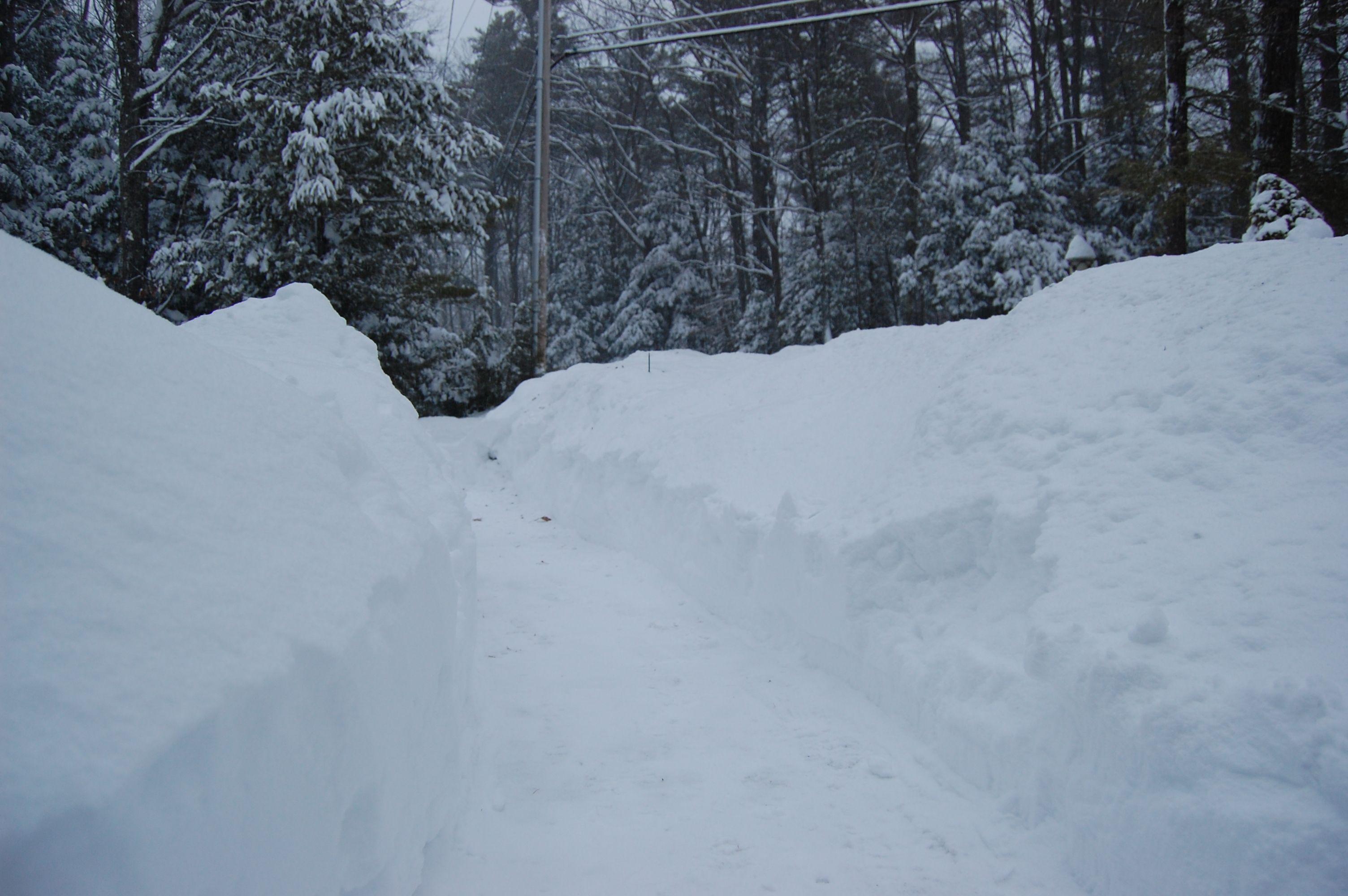 snow www.thethreeyearexperiment.com