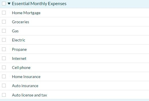 YNAB Essential Expenses