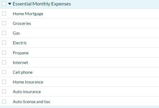 YNAB Essential Expenses
