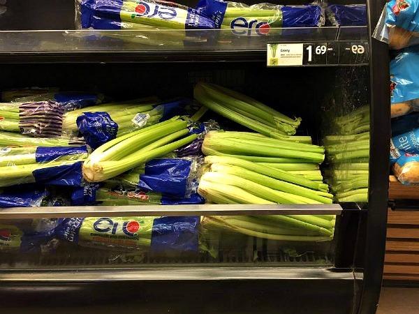 Celery--www.thethreeyearexperiment.com