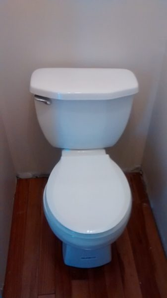 toilet and flooring--www.thethreeyearexperiment.com