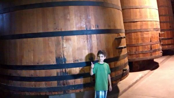 wine barrels--www.thethreeyearexperiment.com