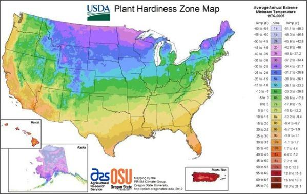 Zone Hardiness Map--www.thethreeyearexperiment.com