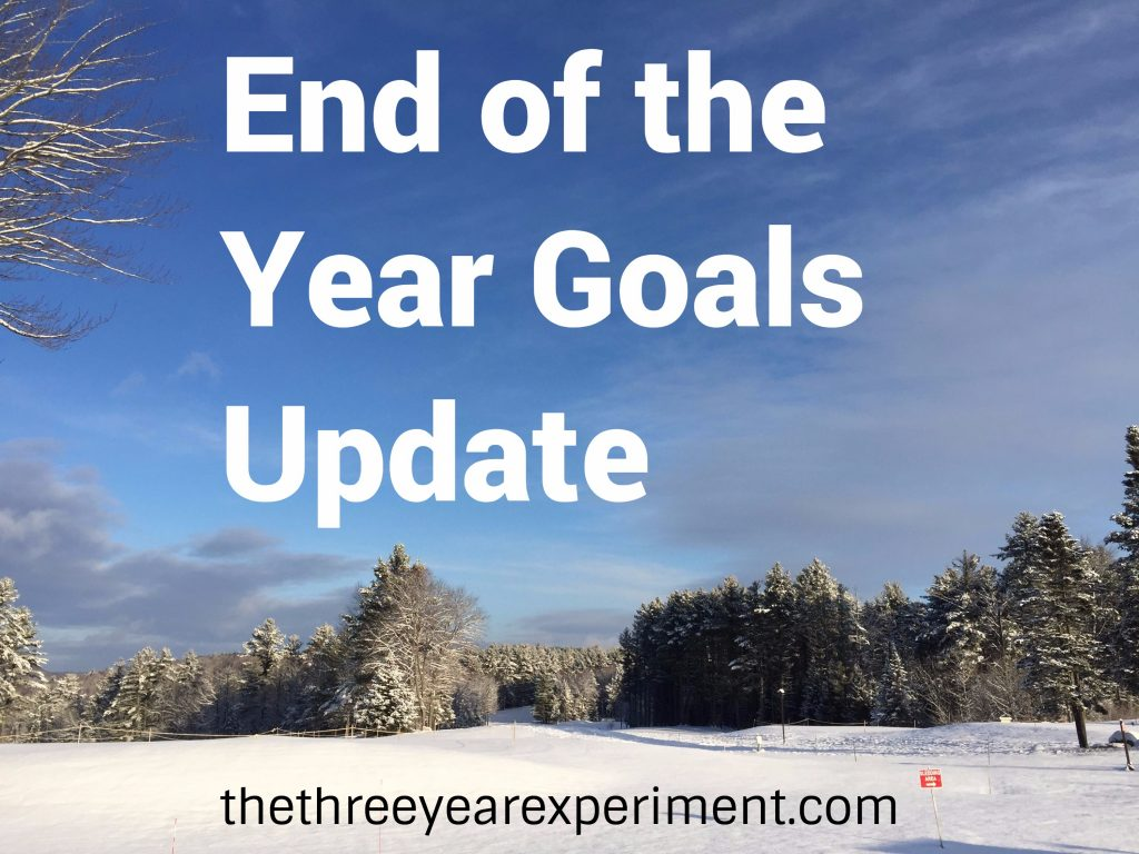 End of the Year Goals Update--www.thethreeyearexperiment.com