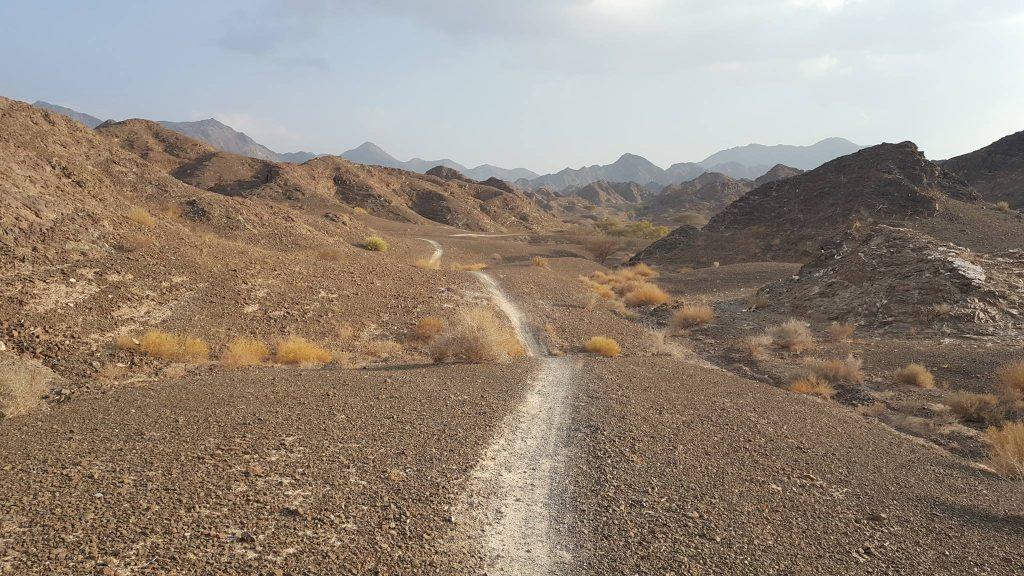 desert--www.thethreeyearexperiment.com