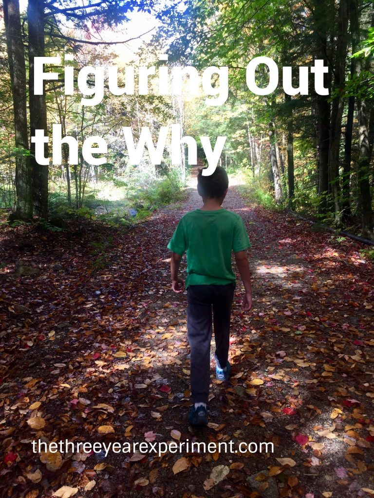 Boy walking in fall woods Figuring out the why www.thethreeyearexperiment.com