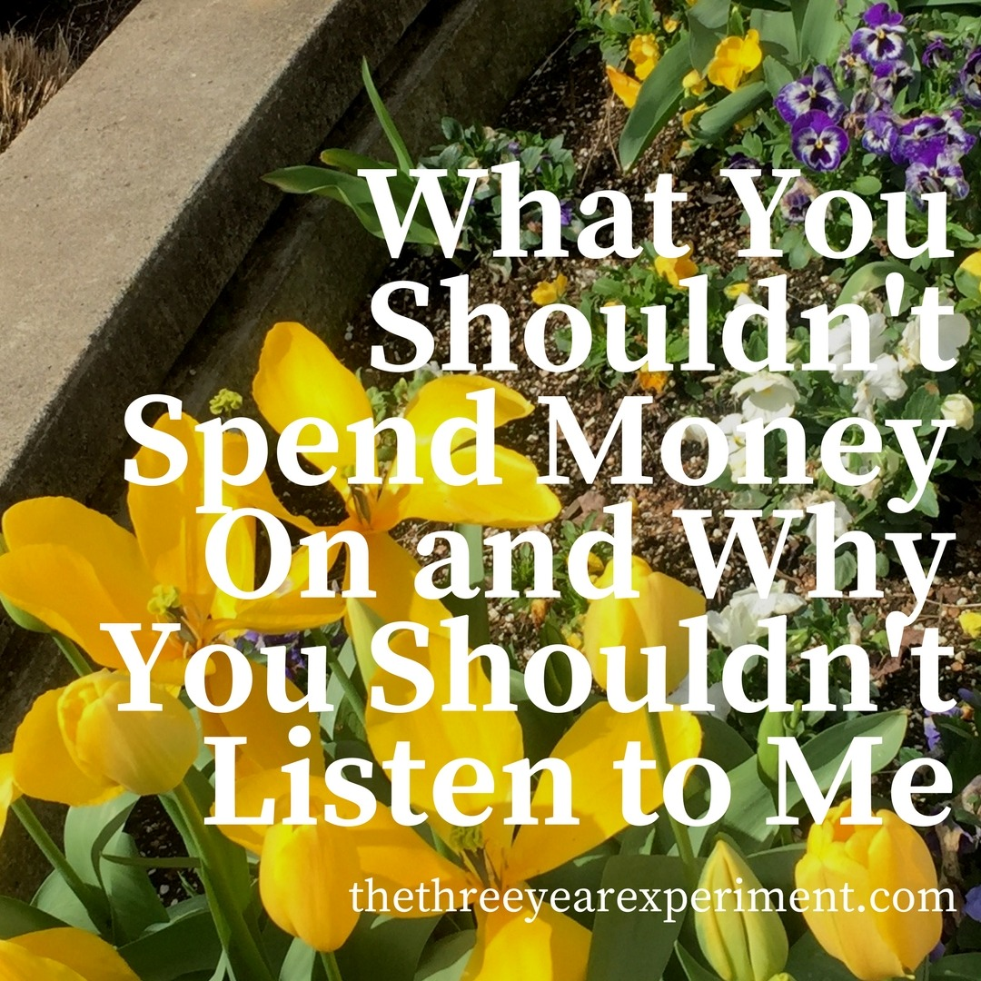 What You Shouldn't Spend Money On and Why You Shouldn't Listen to Me www.thethreeyearexperiment.com