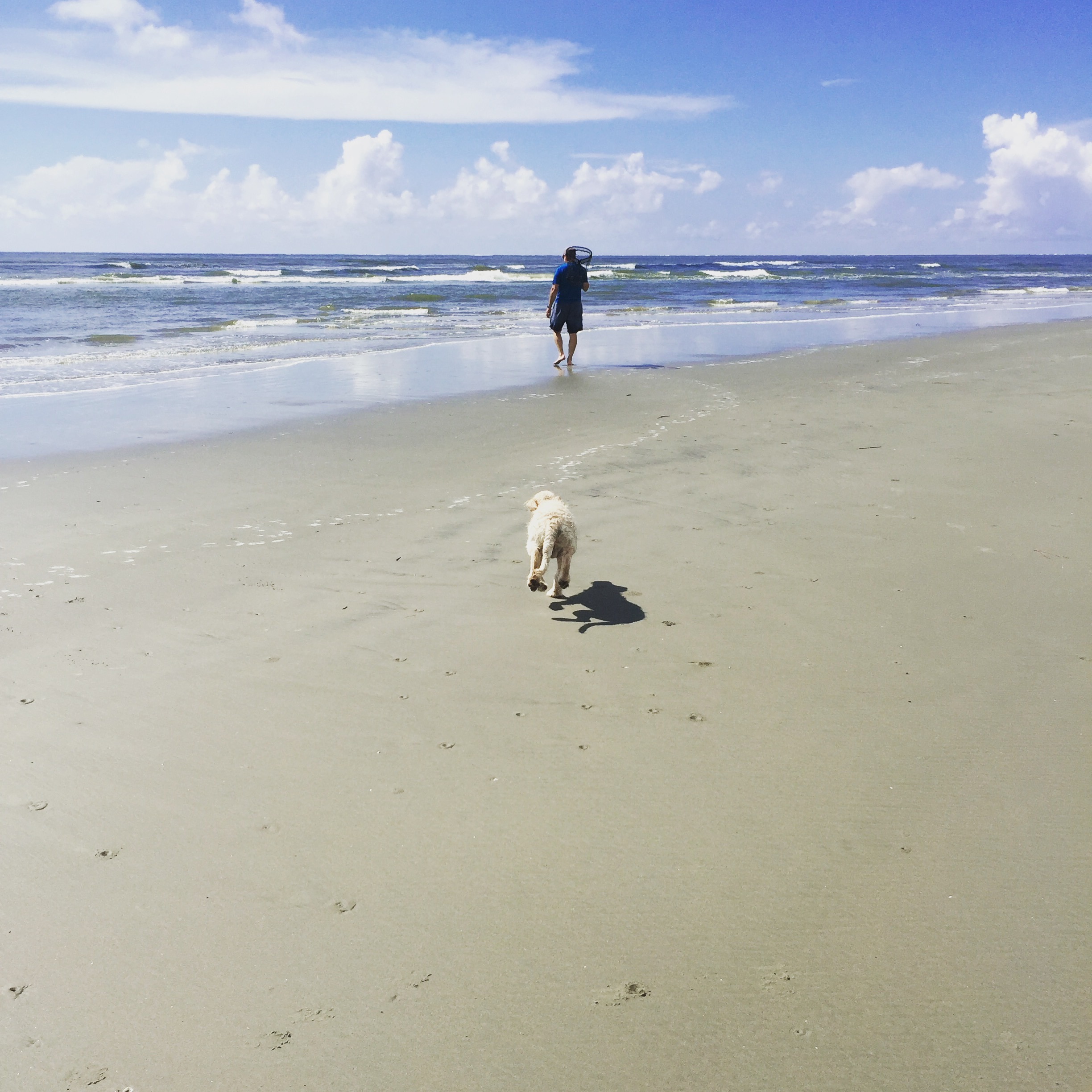Beach with dog www.thethreeyearexperiment.com