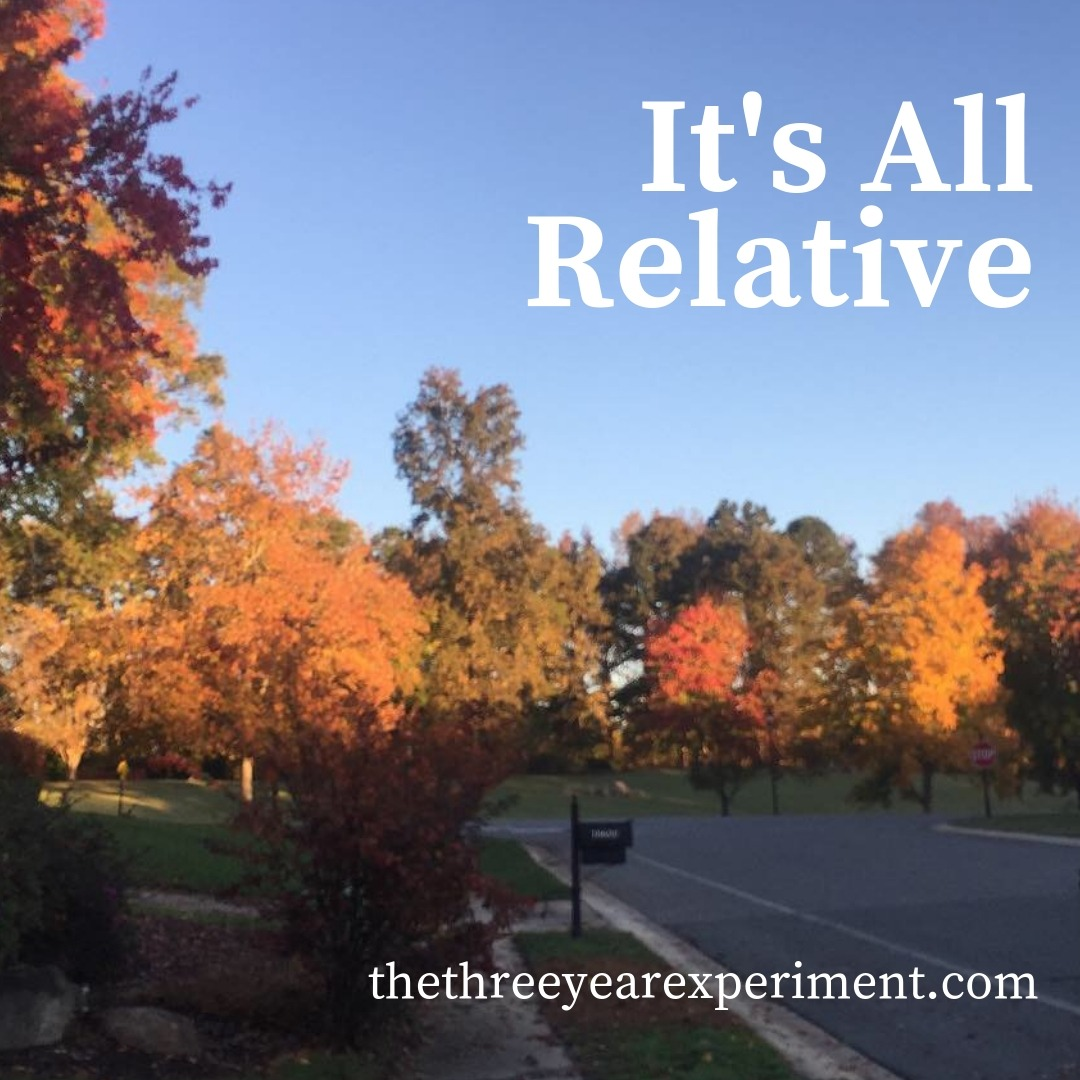 It's All Relative www.thethreeyearexperiment.com