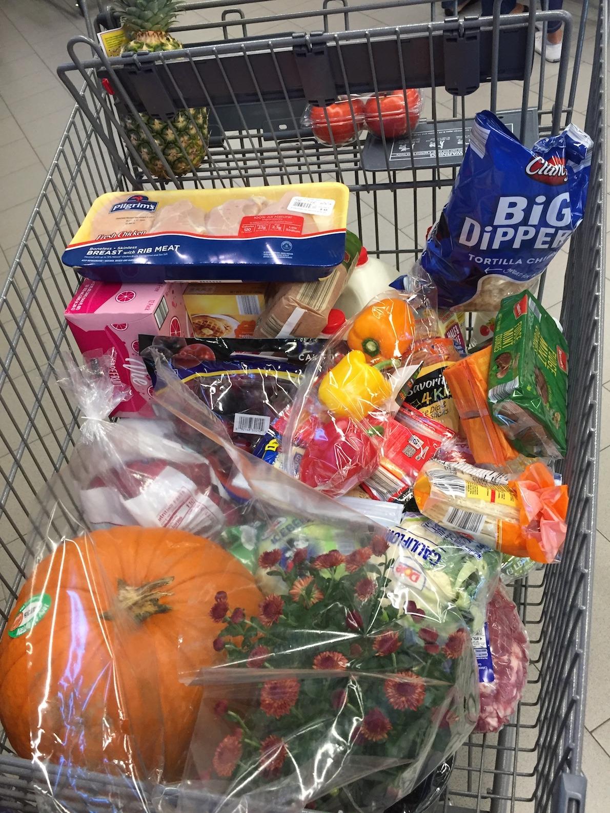 Aldi groceries www.thethreeyearexperiment.com