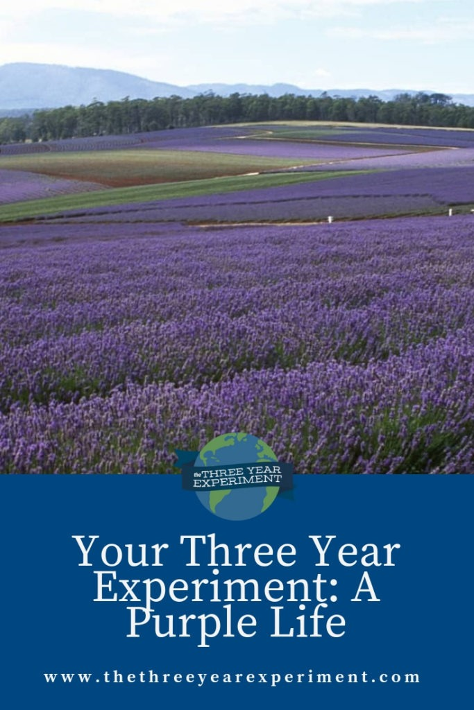 How do you travel, live well, and still save up enough to retire by 30? A Purple Life is doing just that! Here's her story. @lauriethreeyear #geoarbitrage #FIRE #travelhacking #earlyretirement #frugalliving #carfree
